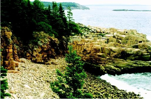 Beach materials can be made of sand, pebbles, cobbles, or boulders. The rocky cobble beaches of Acadia National Park, Maine are the result of the progressive erosion and weathering of coastal bedrock under strong wave action.