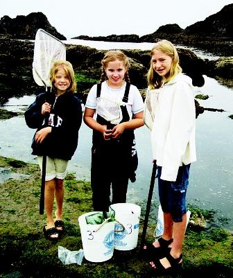 Marine education includes activities and facilities ranging from aquariums to beach walks to shipboard excursions. These girls explore a tidepool, a biologically diverse marine habitat, and one that is easily accessible to curious learners.