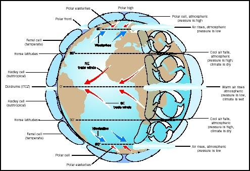 Figure 1. Atmospheric convection cells and winds on a hypothetical water-covered Earth are arranged in latitudinal bands, although they are modified by the influence of land masses. The Coriolis effect deflects air masses, either to the east (if moving away from the equator) or west (if moving toward the equator). Upwelling occurs at the equator and polar fronts, and downwelling at the poles and in mid-latitudes.