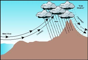 Moist air moving up the side of a mountain facing the prevailing wind causes precipitation to fall in a process known as orographic lifting. On the lee side, a rain shadow occurs, and precipitation is sparse.