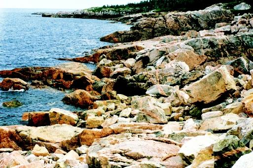 Coastal zone management programs seek to protect rugged and remote shorelines as well as heavily used beaches. All coastal habitats are vulnerable to pollution and overdevelopment.