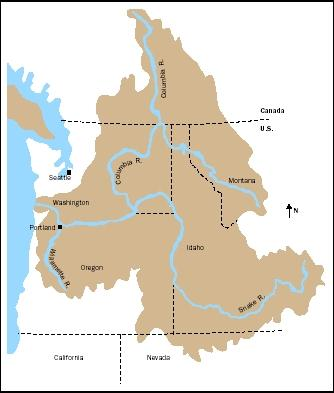 The Columbia River Basin embodies the major challenges of river basin planning and management in the twenty-first century. It is particularly known for its vast network of hydroelectric dams and the environmental and cultural controversies surrounding them.