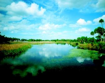 Florida's Crystal River Estuary is a popular tourist destination with ecological, historical, and archaeological significance. The Crystal River State Buffer Preserve provides a protective buffer against development for the nearly pristine St. Martins Marsh Aquatic Preserve. St. Martins Marsh is one of the best examples of a spring-fed estuary remaining in the ever-developing state.