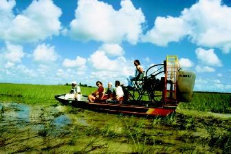 The Florida Everglades encompasses vast tracts of marshland. Water conditions can make airboats an ideal mode of transportation to observe and research the vegetation and animals associated with this complex wetland system.