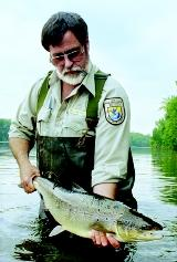 One goal of the U.S. Fish and Wildlife Service is to conserve fish and wildlife populations, whether for sport or for the maintenance of at-risk wild populations. This biological technician releases a 9-pound salmon into the Connecticut River.