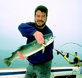 Steelhead trout are one of the important cold-water fish species in Lake Michigan. Lake Michigan steelheads are wild hybrids.