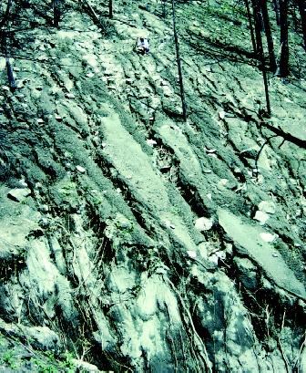 Rill and gully erosion caused by flowing water is evident on this steep slope following a forest fire. (Note the person crouching.) The soil loss can be substantial, and denuded slopes can be difficult to revegetate.