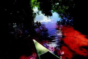 Natural factors can cause various colors in streams, lakes, and wetlands. Algal and microbial activity, rather than any human intervention, turned the water red in this portion of Alexander Springs Creek in Ocala, Florida.