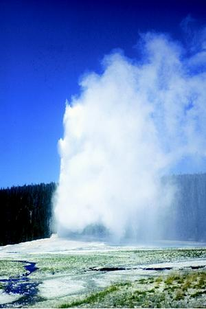 The Old Faithful geyser in Wyoming's Yellowstone National Park erupts about once every 65 minutes, much to the delight of tourists. The water ejected during each eruption is at or near the boiling point, often reaches a height of 50 meters (approximately 170 feet), and has an estimated volume of 45,000 liters (12,000 gallons).