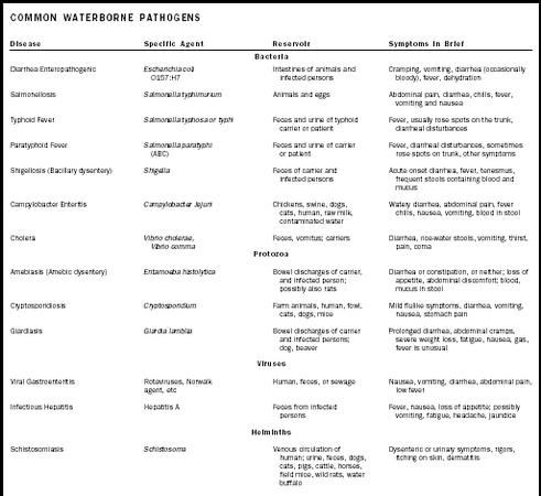 Common waterborne pathogens