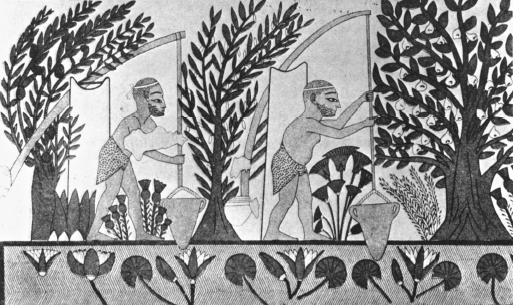 Early Agriculture in Mesopotamia http://www.waterencyclopedia.com/Hy-La/Irrigation-Systems-Ancient.html