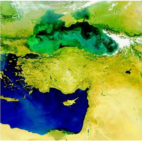 The Mediterranean Sea and the Black Sea are marginal seas found in proximity to one another. The color difference shown here is due to a phytoplankton bloom occurring in the Black Sea.