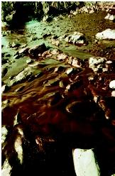 Crude oil from the Sea Empress tanker spill coats a beach at Pembrokeshire, Wales in 1996. Although marine transportation accidents can result in such oil spills, they account for only about 5 percent of the waste oil that enters the ocean annually.