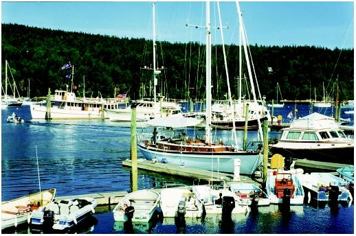 Increasing public demand for recreational uses of harbors sometimes competes with plans for port development. This harbor in Maine is typical of U.S. coastal harbors used predominantly by recreational boaters and fishers.