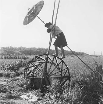 Human-powered devices traditionally were used to move water short distances and up low grades. This irrigation wheel in Japan was still being used in 1958 to irrigate a small plot.