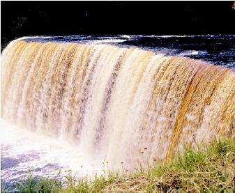 "Tahquamenon Falls in Michigan's upper peninsula is known for its ""root beer"" color. The brown coloring comes from tannins leaching into runoff water from tree roots and decaying vegetation. The colored water eventually reaches the Tahquamenon River."