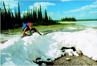 Seeps occur where the amount of groundwater discharge is small; some seeps may be highly mineralized. In Wood Buffalo National Park, Alberta (Canada), water percolating upward through the bedrock and soil into low-lying plains causes saturation of the plains surface by mineralized groundwaters. The salt mounds (being observed here by a hiker) reflect the issuance and evaporation of the mineralized groundwater from a central vent. The deposit grows progressively upward as the water continues to move through the opening to the surface and spills over the side. As the water cools and the pressure is released at the surface, minerals are deposited from the mineral-rich water.