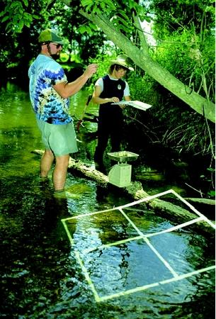Scientists use chemical and biological parameters to evaluate the water quality in a stream and its ability to support a thriving aquatic community. These researchers are assessing fresh-water mussel populations by measuring mussel diversity and abundance within a sample grid area. They extrapolate the results to estimate the population across the entire stream segment being studied.
