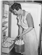 The Tennessee Valley Authority provided electricity for the first time to thousands of rural residents in the 1930s. Federal workers traveled to homes to teach residents how to use electrical appliances, including stoves, ovens, and refrigerators.