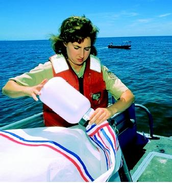 Aquatic ecology and fisheries biology are two of many water science fields that are attracting more women. This scientist is preparing to deploy a sampling device that will collect small organisms in an Indiana reservoir. The sampling effort is part of a fisheries and water quality survey.